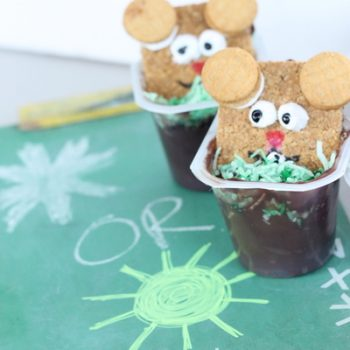 Groundhog Pudding Cup