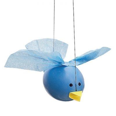 Egg Bluebird