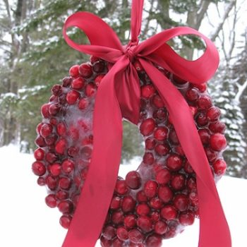 Cranberry Ice Wreath