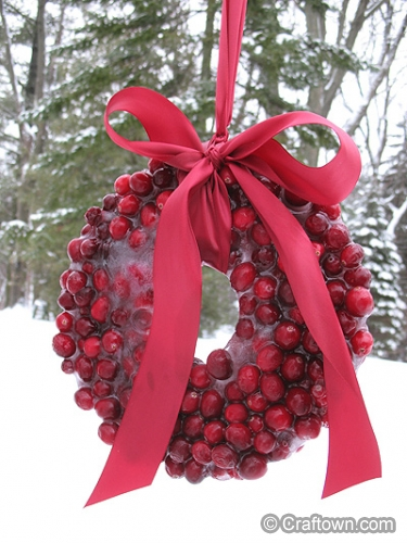 Frozen Cranberry Wreath