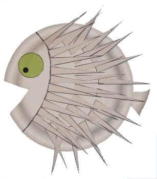Paper Plate Porcupine Fish