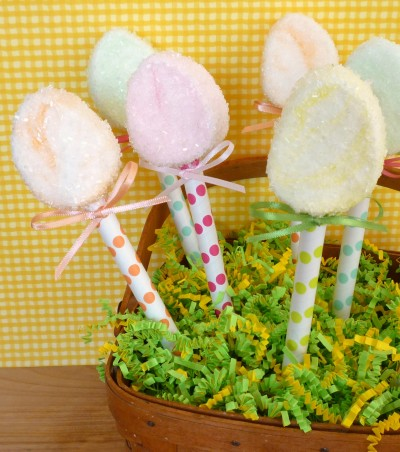 Sugared Egg Marshmallow Pops