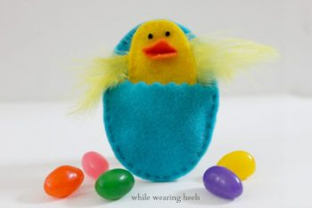 Felt Egg and Chick