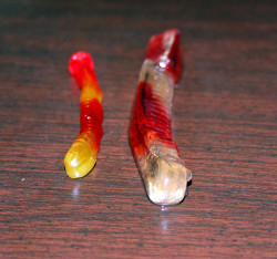 Gummy Worm Experiment