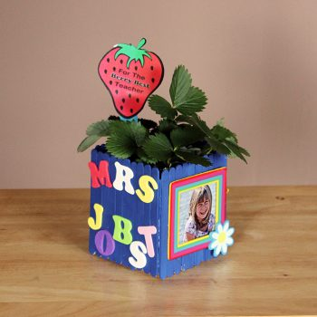 Teacher Appreciation Planter