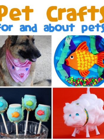 Pet Crafts & Recipes