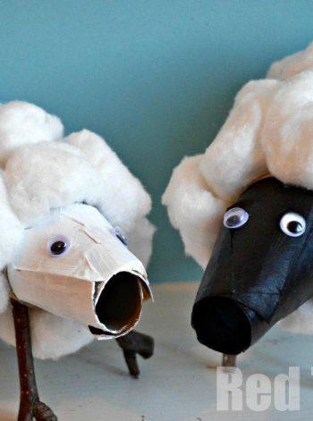 Cardboard Tube Sheep