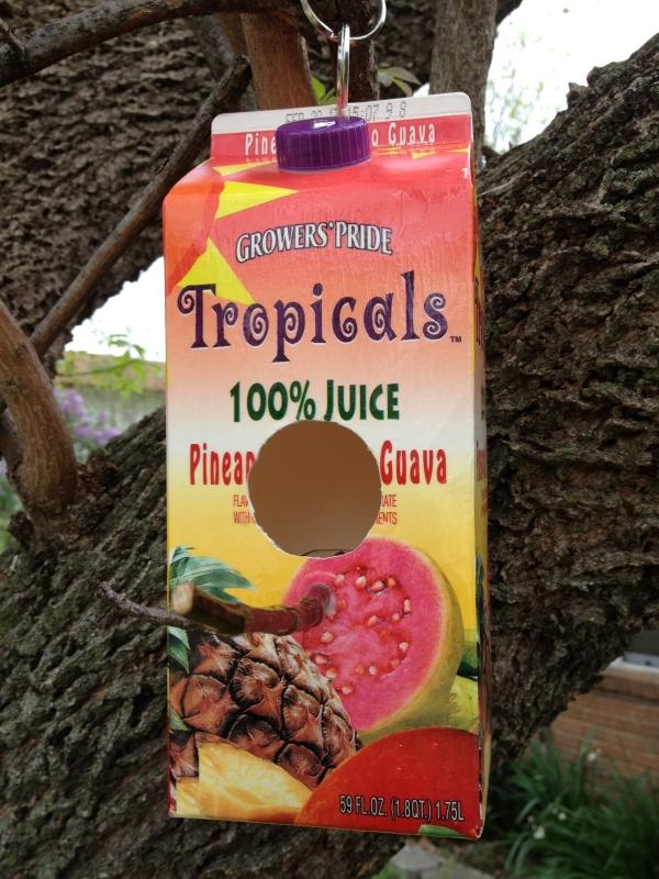 Juice Carton Bird Feeder Fun Family Crafts
