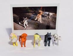 Dog Photo Stand