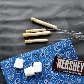 DIY S'more Roasters
