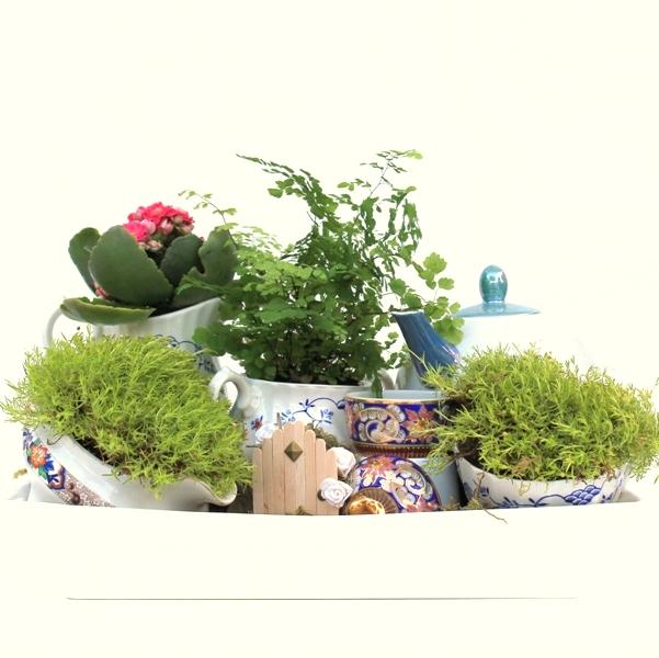 Tea Pot Mini Garden