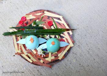 Baby Bird Nest