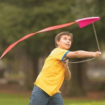 20-Minute Kite