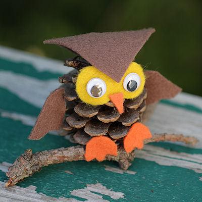 Pinecone Owl