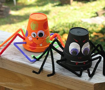 Paper Cup Spider