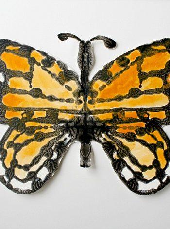 Monarch Butterfly Symmetry Art