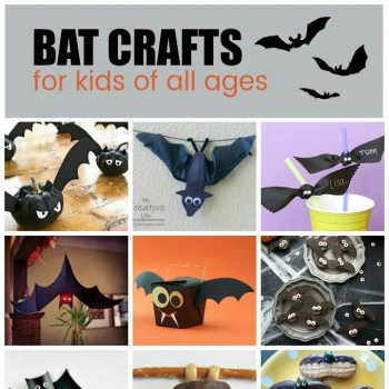 Bat Crafts and Recipes