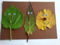 Faces from Fall Leaves