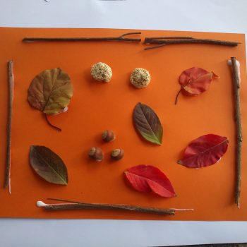 Fall Nature Collage