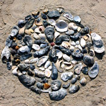 Outdoor Shell Sculpture