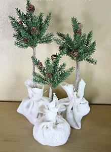 Evergreen Topiary