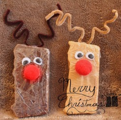 Reindeer Fudge