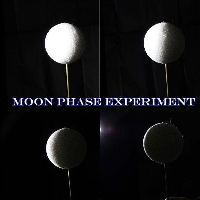 Moon Phases Experiment Fun Family Crafts