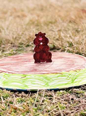Groundhog Shadow Plate