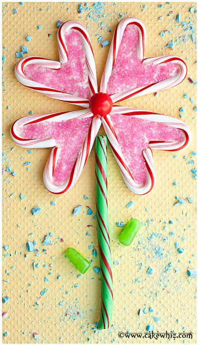 Candy Cane Flower Puzzle