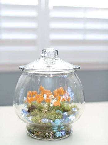 Pretend Goldfish Bowl