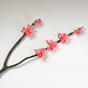 Egg Carton Cherry Blossoms