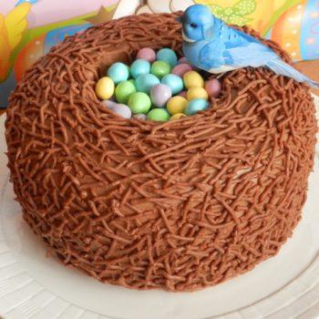 Bird Nest Cake