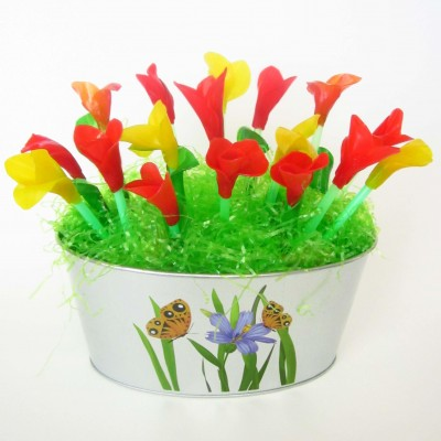 Fruit Leather Tulip Basket
