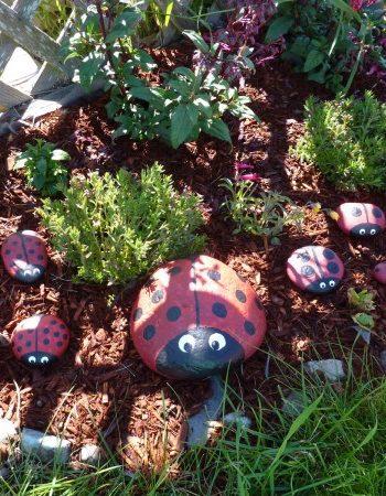 Garden Ladybug Rocks