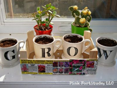 Cutie Crate Upcycle to Herb Garden
