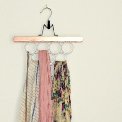 Scarf and Accessory Hanger