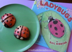 Ladybug Apples