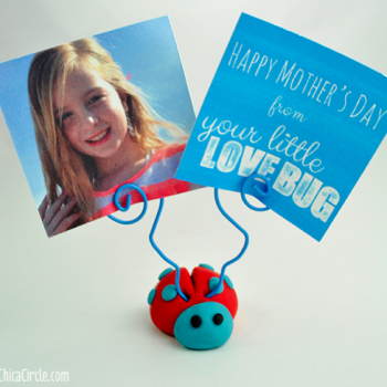 Love Bug Ladybug Picture Holder