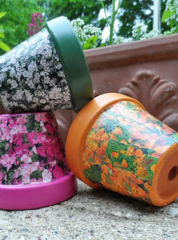 Seed Packet Decoupage Clay Pots