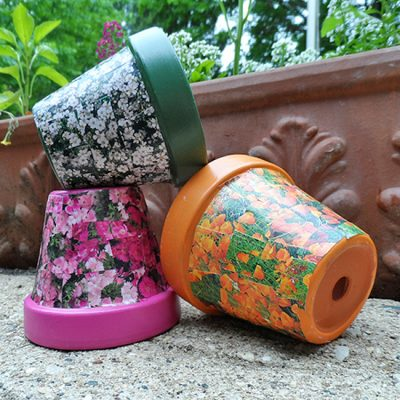 Seed-Packet-Clay-Pots-550