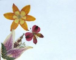 pressed_flower
