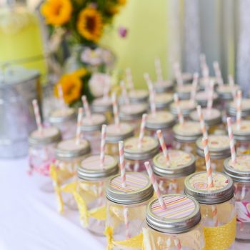 Mason Jar Sippy Cups