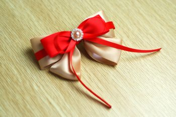 Two-Color Bow Hair Clip