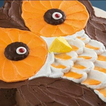 Big-Eyed Owl Cake
