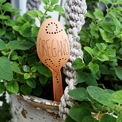 Plastic Spoon Garden Markers