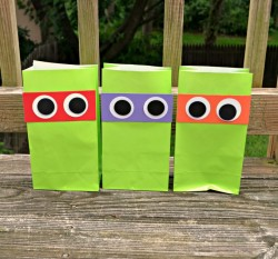 Teenage Mutant Ninja Turtles Favor Bags