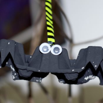 Spooky Egg Carton Bat Decoration