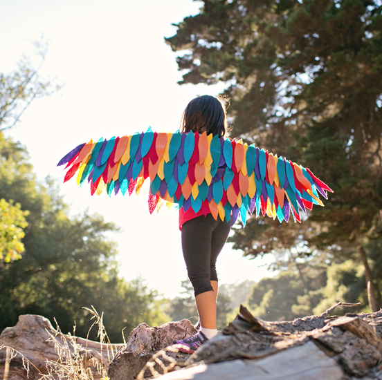 Rainbow Bird Wing Costume