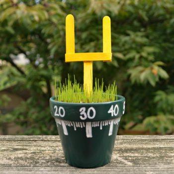 Mini Football Field Craft