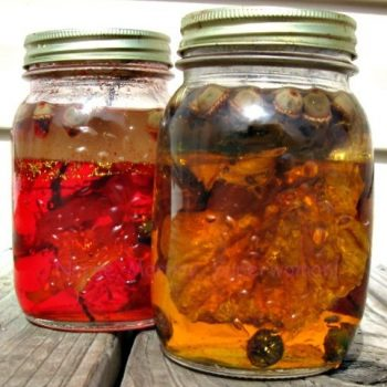 Fall Discovery Jars